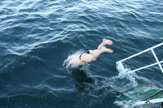 Старт заплыва в ледяной воде Байкала (фото)